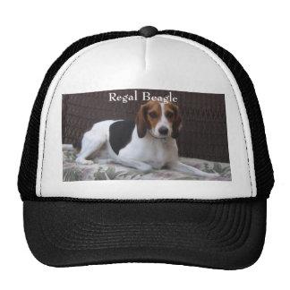 Regal Beagle Hound Dog Hat