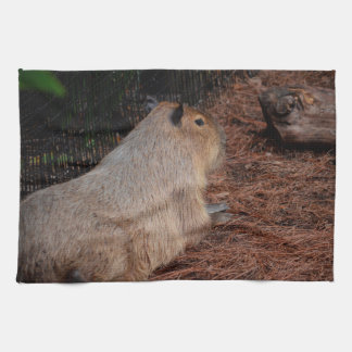 regal capybara back view animal towel