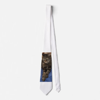 Regal Dave Men's Tie