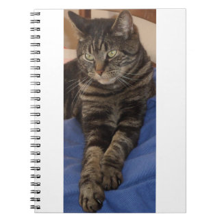 Regal Dave Photo Notebook (80 Pages)