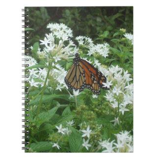 Regal Fritillary Spiral Photo Notebook