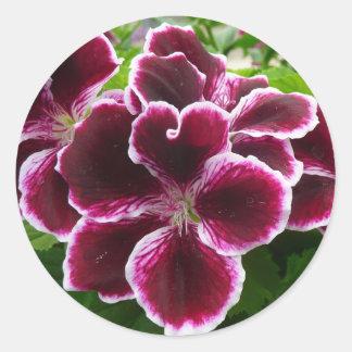 Regal Geranium Flowers Elegant Maroon Floral Classic Round Sticker