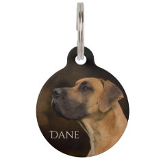 Regal Great Dane Pet ID Tag