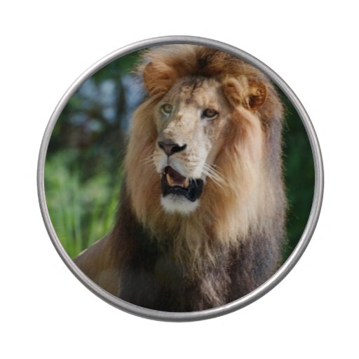 Regal Lion Candy Tin