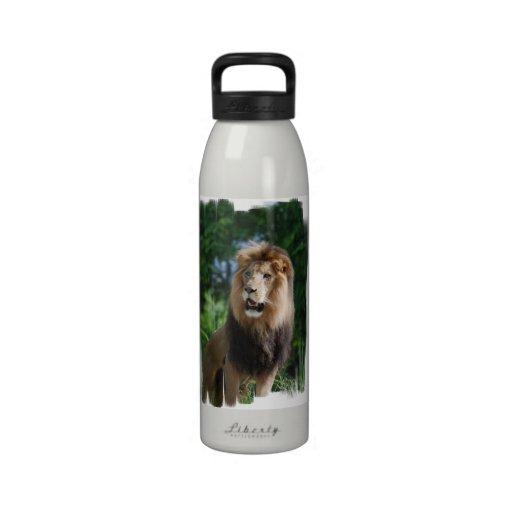 Regal Lion  Water Bottle