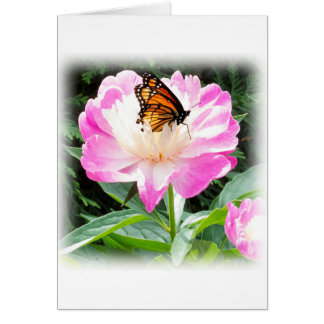 Regal Monarch butterfly resting on a peony. Card
