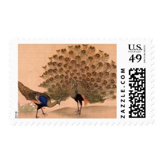 Regal Peacocks Postage Stamp