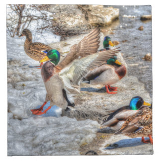 Regalo 4 de la fauna de Drake del pato silvestre d