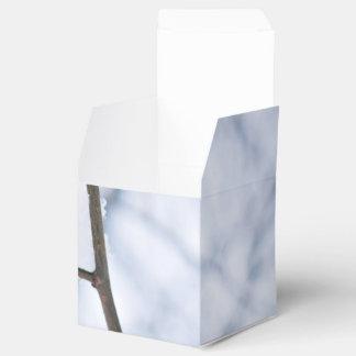 Regalo blanco caja para regalos