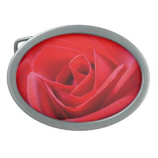 Regalo color de rosa de los rosas de las hebillas  hebillas cinturón ovales