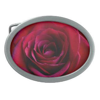 Regalo color de rosa de los rosas de las hebillas  hebillas de cinturón ovales