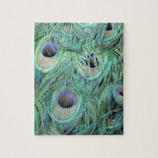 Regalo colorido del Peafowl Rompecabezas Con Fotos