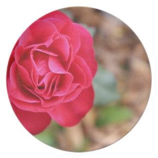Regalo con color de rosa para el el día de San Val Platos Para Fiestas