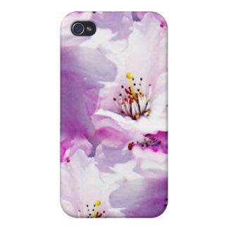Regalo de boda rosado magnífico del flor iPhone 4 funda