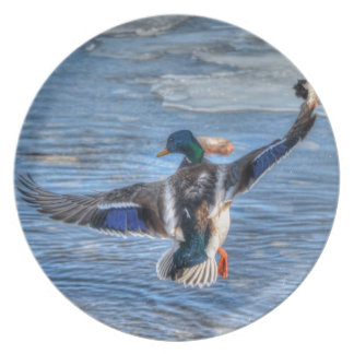 Regalo de la fauna de Drake del pato silvestre del Plato De Cena