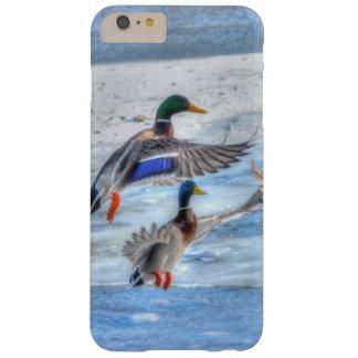 Regalo de la fauna de los Drakes del pato Funda De iPhone 6 Plus Barely There