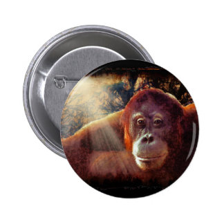 Regalo de los Fauna-amantes del primate de los Pin Redondo De 2 Pulgadas
