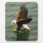 Regalo de motivación calvo de Eagle Tapete De Raton