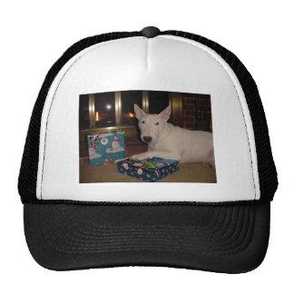 regalo de Navidad de bull terrier del inglés Gorras
