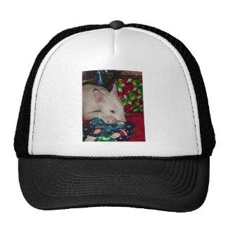 regalo de Navidad de bull terrier del inglés Gorro De Camionero