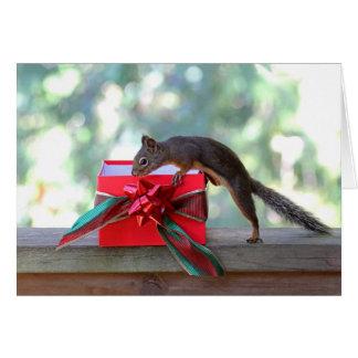 Regalo de Navidad de la abertura de la ardilla Tarjeta De Felicitación