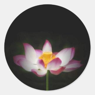 ¡Regalo de OM de la yoga de la fotografía de la Pegatina Redonda