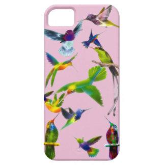 Regalo del diseñador de Birdlover de los colibríes iPhone 5 Fundas
