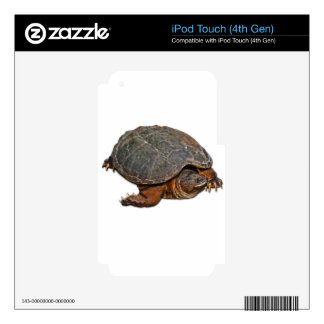 Regalo del Tortuga-amante de la tortuga de rotura iPod Touch 4G Skin