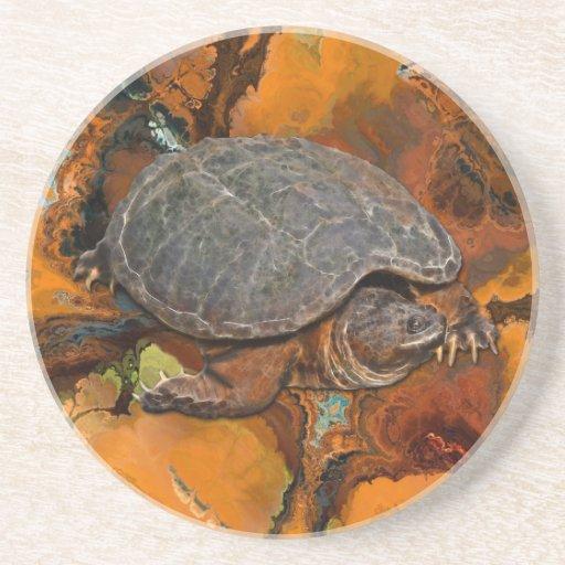 Regalo del Tortuga-amante de la tortuga de rotura Posavasos Cerveza