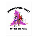 Regalo del voleibol de las mujeres