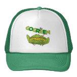 Regalo divertido de la ecología de la rana verde gorras