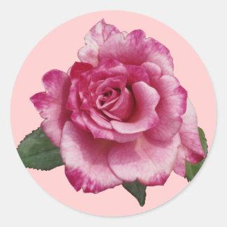 Regalo miniatura color de rosa pegatina redonda