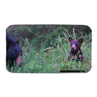 Regalo salvaje de la fauna de los Animal-amantes Case-Mate iPhone 3 Cárcasas