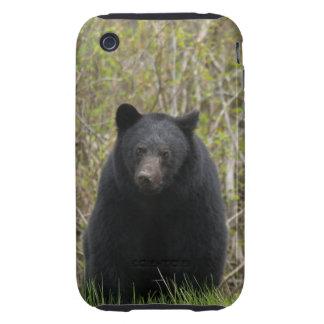 Regalo salvaje de la fauna de los Animal-amantes iPhone 3 Tough Funda