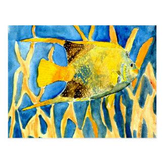 regalo tropical de la pintura del arte de la vida  postal