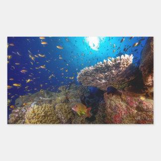 Regalo tropical del mar de coral de la gran pegatina rectangular