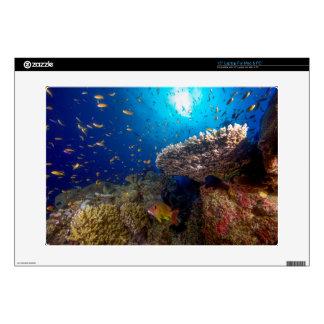 Regalo tropical del mar de coral de la gran portátil 38,1cm skins