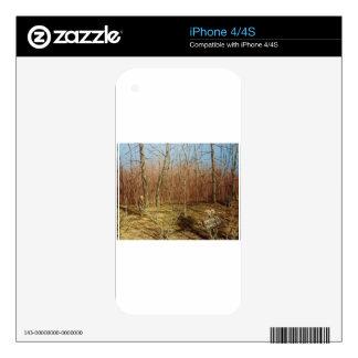 Regalos al aire libre/de la naturaleza iPhone 4 skins