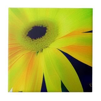 Regalos amarillos brillantes de la margarita azulejo cuadrado pequeño