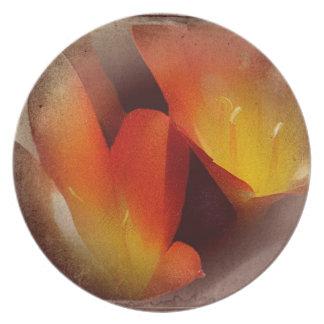 Regalos anaranjados del lirio plato de comida