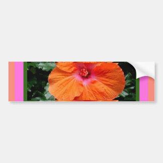 Regalos anaranjados tropicales de la flor del hibi pegatina para auto