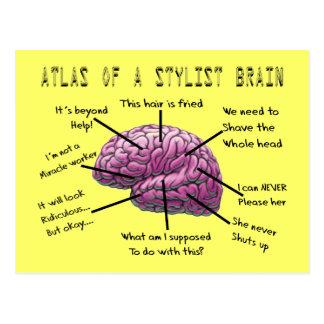 Regalos atlas del estilista de un cerebro del est postal