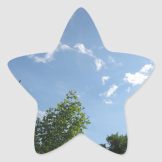 Regalos azules NVN684 f de CherryHILL América del Calcomania Forma De Estrella Personalizadas