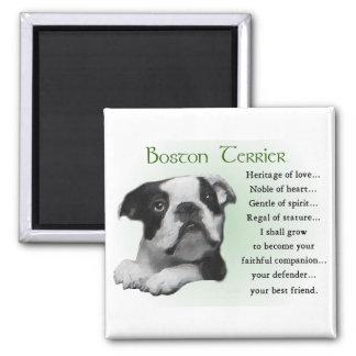 Regalos de Boston Terrier Imán De Frigorífico