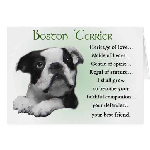 Regalos de Boston Terrier Tarjetón