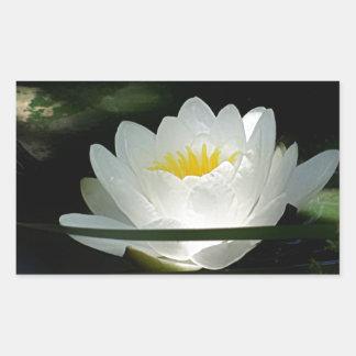 Regalos de la flor de Lotus Rectangular Altavoces
