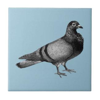 Regalos de la paloma del vintage azulejo cuadrado pequeño