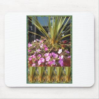 REGALOS de la VUELTA del sorteo de la hierba de Tapete De Ratón