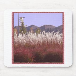 REGALOS de la VUELTA del sorteo de la hierba de Tapete De Raton