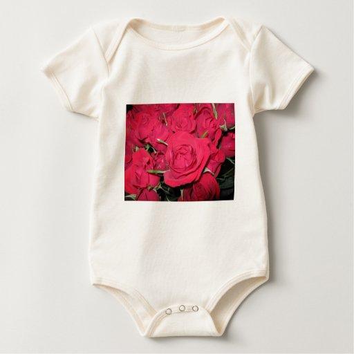 Regalos de los rosas rojos mameluco
